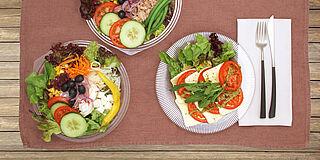 Knackige Salate mit Kopfsalat, Kurken, Tomaten, Karotten, usw.